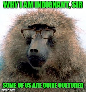 WHY I AM INDIGNANT, SIR SOME OF US ARE QUITE CULTURED | made w/ Imgflip meme maker