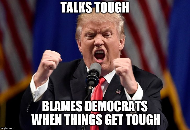 Talks Tough | TALKS TOUGH BLAMES DEMOCRATS WHEN THINGS GET TOUGH | image tagged in donald trump,trump,political meme | made w/ Imgflip meme maker