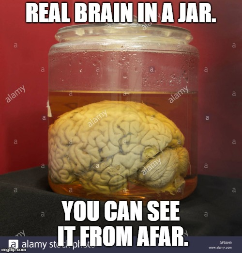 REAL BRAIN IN A JAR. YOU CAN SEE IT FROM AFAR. | made w/ Imgflip meme maker