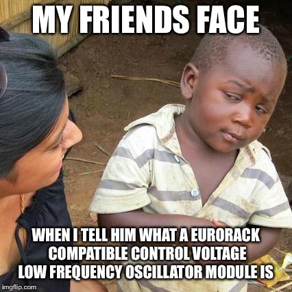 Third World Skeptical Kid Meme | MY FRIENDS FACE WHEN I TELL HIM WHAT A EURORACK COMPATIBLE CONTROL VOLTAGE LOW FREQUENCY OSCILLATOR MODULE IS | image tagged in memes,synthesizer,music | made w/ Imgflip meme maker
