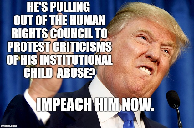 Donald Trump | HE'S PULLING OUT OF THE HUMAN RIGHTS COUNCIL TO PROTEST CRITICISMS OF HIS INSTITUTIONAL CHILD  ABUSE? IMPEACH HIM NOW. | image tagged in donald trump | made w/ Imgflip meme maker