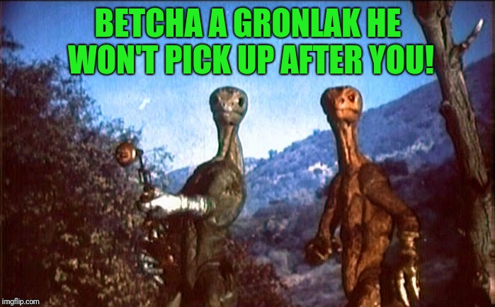 BETCHA A GRONLAK HE WON'T PICK UP AFTER YOU! | made w/ Imgflip meme maker