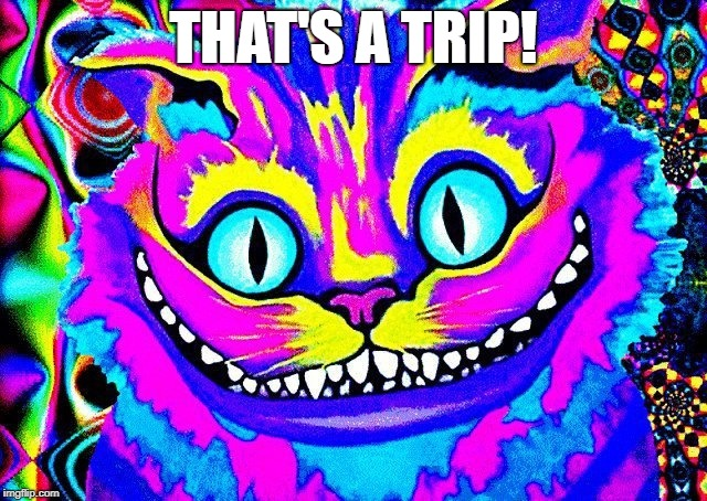 THAT'S A TRIP! | made w/ Imgflip meme maker