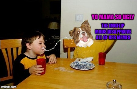 Yo Mamas So Fat Meme | YO MAMA SO UGLY THE IMGFLIP MODS DISAPPROVE ALL OF HER MEMES | image tagged in memes,yo mamas so fat,chili the border collie,dogs,border collie | made w/ Imgflip meme maker
