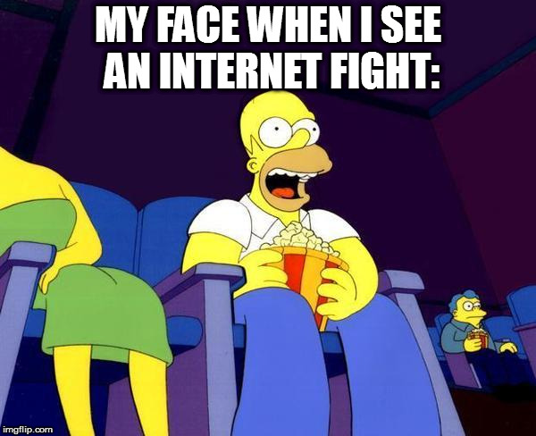 Homer Simpson Popcorn | MY FACE WHEN I SEE AN INTERNET FIGHT: | image tagged in homer simpson popcorn | made w/ Imgflip meme maker