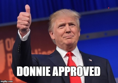 D approve | image tagged in d approve | made w/ Imgflip meme maker