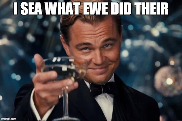 Leonardo Dicaprio Cheers Meme | I SEA WHAT EWE DID THEIR | image tagged in memes,leonardo dicaprio cheers | made w/ Imgflip meme maker
