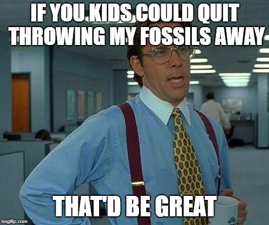 That Would Be Great Meme | IF YOU KIDS COULD QUIT THROWING MY FOSSILS AWAY THAT'D BE GREAT | image tagged in memes,that would be great | made w/ Imgflip meme maker