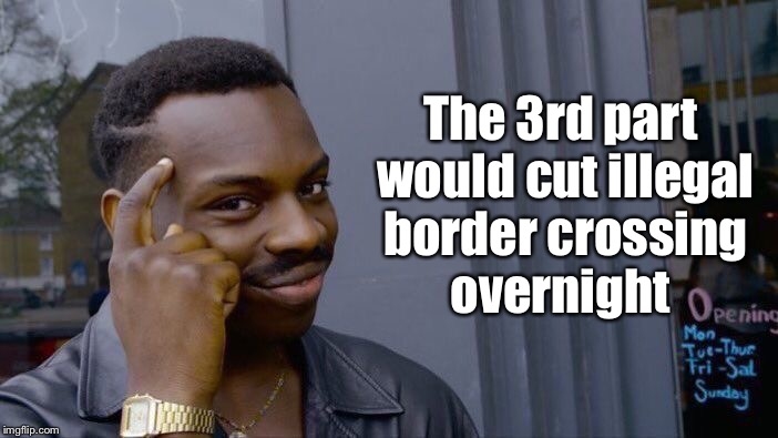 Roll Safe Think About It Meme | The 3rd part would cut illegal border crossing overnight | image tagged in memes,roll safe think about it | made w/ Imgflip meme maker