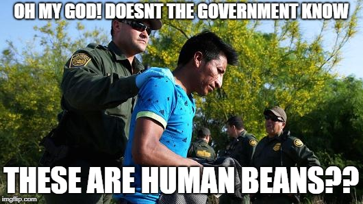 Immigration   | OH MY GOD! DOESNT THE GOVERNMENT KNOW THESE ARE HUMAN BEANS?? | image tagged in help them | made w/ Imgflip meme maker