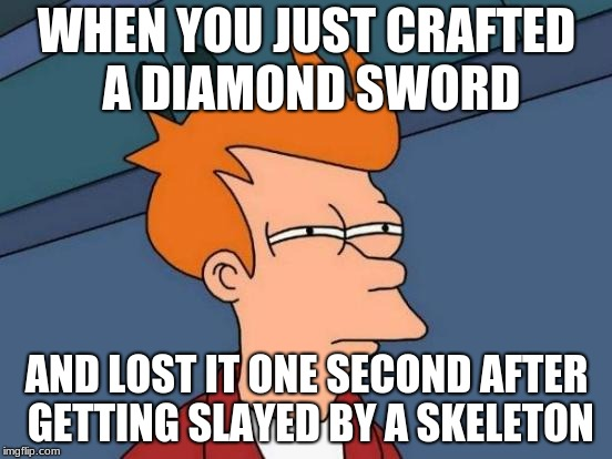 Futurama Fry Meme | WHEN YOU JUST CRAFTED A DIAMOND SWORD AND LOST IT ONE SECOND AFTER GETTING SLAYED BY A SKELETON | image tagged in memes,futurama fry | made w/ Imgflip meme maker