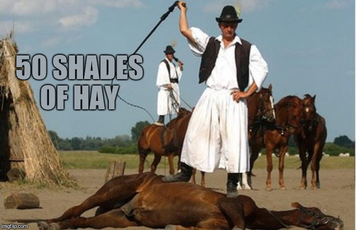 50 SHADES OF HAY | made w/ Imgflip meme maker