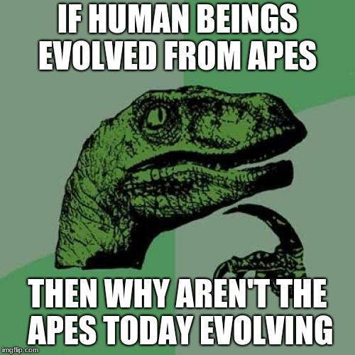 Philosoraptor Meme | IF HUMAN BEINGS EVOLVED FROM APES THEN WHY AREN'T THE APES TODAY EVOLVING | image tagged in memes,philosoraptor | made w/ Imgflip meme maker
