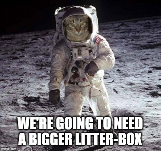 WE'RE GOING TO NEED A BIGGER LITTER-BOX | image tagged in going to need a bigger boat,i should buy a boat cat,cat,litter box,cat on the moon | made w/ Imgflip meme maker