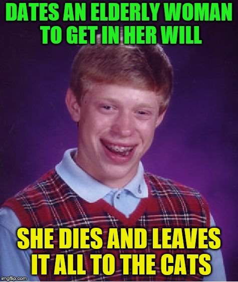 Bad Luck Brian Meme | DATES AN ELDERLY WOMAN TO GET IN HER WILL SHE DIES AND LEAVES IT ALL TO THE CATS | image tagged in memes,bad luck brian | made w/ Imgflip meme maker