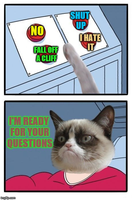 His turn to push our buttons (An AndrewFinlayson request) | NO FALL OFF A CLIFF SHUT UP I HATE IT I'M READY FOR YOUR QUESTIONS | image tagged in grumpy cat four buttons,memes,questions,personal challenge,andrewfinlayson | made w/ Imgflip meme maker