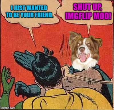 Batman Slapping Robin Meme | I JUST WANTED TO BE YOUR FRIEND. SHUT UP, IMGFLIP MOD! | image tagged in memes,batman slapping robin,chili the border collie,dogs,border collie | made w/ Imgflip meme maker