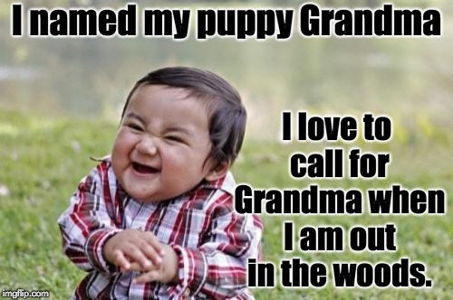 Evil Toddler | I named my puppy Grandma I love to call for Grandma when I am out in the woods. | image tagged in memes,evil toddler | made w/ Imgflip meme maker