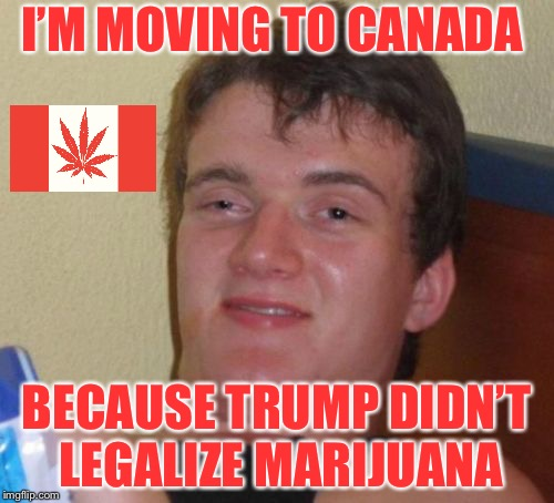 10 Guy Meme | I'M MOVING TO CANADA BECAUSE TRUMP DIDN'T LEGALIZE MARIJUANA | image tagged in memes,10 guy | made w/ Imgflip meme maker