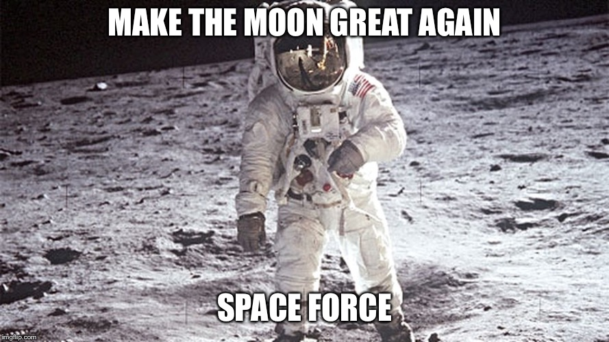 MAKE THE MOON GREAT AGAIN SPACE FORCE | image tagged in space force | made w/ Imgflip meme maker