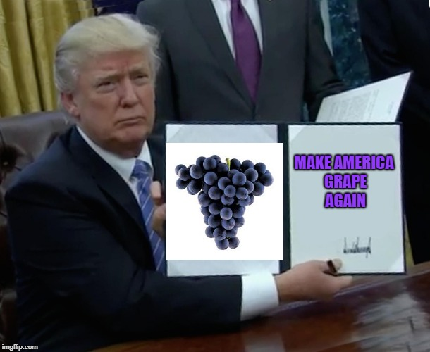 Trump Bill Signing Meme | MAKE AMERICA GRAPE AGAIN | image tagged in memes,trump bill signing,grapes | made w/ Imgflip meme maker