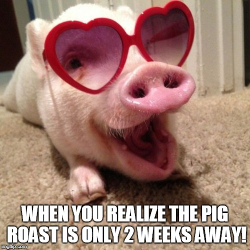 pig hearts | WHEN YOU REALIZE THE PIG ROAST IS ONLY 2 WEEKS AWAY! | image tagged in pig hearts | made w/ Imgflip meme maker