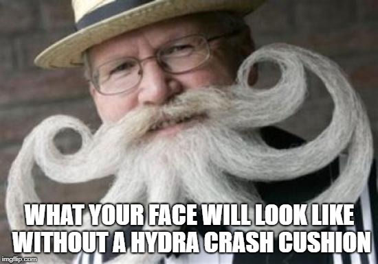 WHAT YOUR FACE WILL LOOK LIKE WITHOUT A HYDRA CRASH CUSHION | image tagged in dandy hydra | made w/ Imgflip meme maker