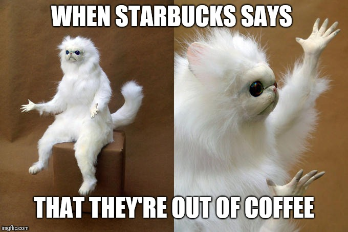 Persian Cat Room Guardian | WHEN STARBUCKS SAYS THAT THEY'RE OUT OF COFFEE | image tagged in memes,persian cat room guardian | made w/ Imgflip meme maker