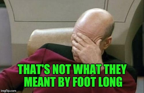 Captain Picard Facepalm Meme | THAT'S NOT WHAT THEY MEANT BY FOOT LONG | image tagged in memes,captain picard facepalm | made w/ Imgflip meme maker