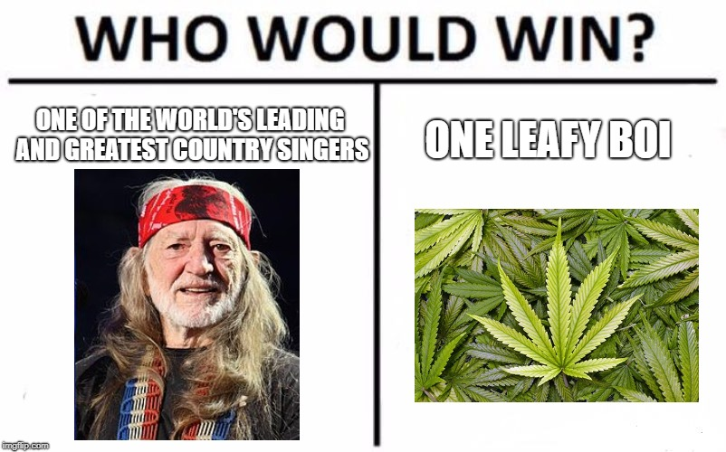 One Leafy Boi Comment Who You Think Will Win | ONE OF THE WORLD'S LEADING AND GREATEST COUNTRY SINGERS ONE LEAFY BOI | image tagged in memes,who would win,willie nelson,country music | made w/ Imgflip meme maker