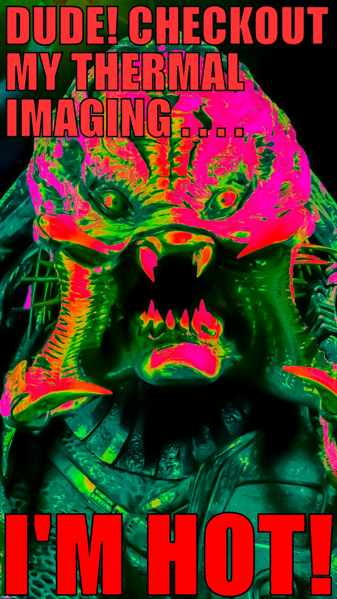 I'm Hot! | DUDE! CHECKOUT MY THERMAL IMAGING . . . . I'M HOT! | image tagged in predator,berserk | made w/ Imgflip meme maker