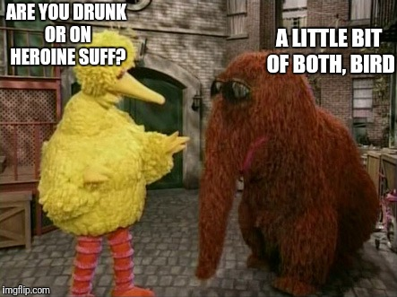 Big Bird And Snuffy Meme | ARE YOU DRUNK OR ON HEROINE SUFF? A LITTLE BIT OF BOTH, BIRD | image tagged in memes,big bird and snuffy | made w/ Imgflip meme maker