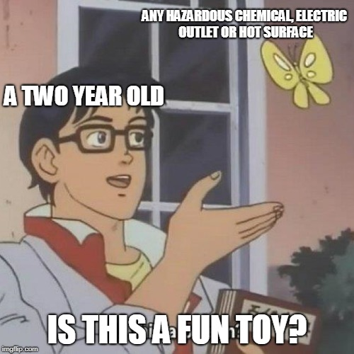 is this a pigeon? | ANY HAZARDOUS CHEMICAL, ELECTRIC OUTLET OR HOT SURFACE IS THIS A FUN TOY? A TWO YEAR OLD | image tagged in is this a pigeon | made w/ Imgflip meme maker