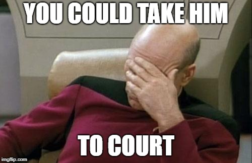 Captain Picard Facepalm Meme | YOU COULD TAKE HIM TO COURT | image tagged in memes,captain picard facepalm | made w/ Imgflip meme maker