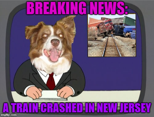 Peter Griffin News |  BREAKING NEWS:; A TRAIN CRASHED IN NEW JERSEY | image tagged in peter griffin news,chili the border collie,dogs,border collie,new jersey,trains | made w/ Imgflip meme maker