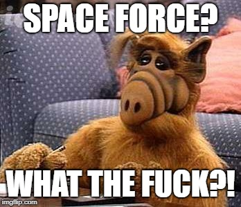 ALF and the Space Force | SPACE FORCE? WHAT THE F**K?! | image tagged in alf,space force | made w/ Imgflip meme maker