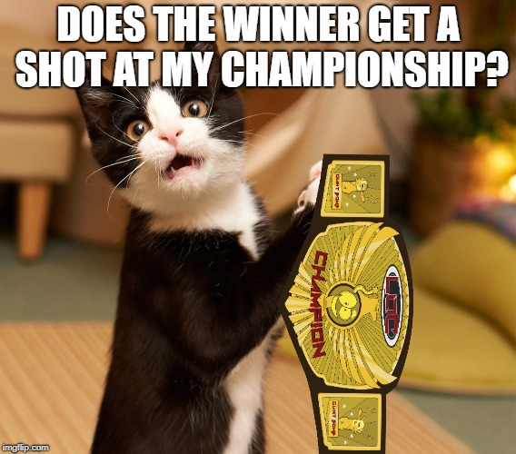 DOES THE WINNER GET A SHOT AT MY CHAMPIONSHIP? | made w/ Imgflip meme maker
