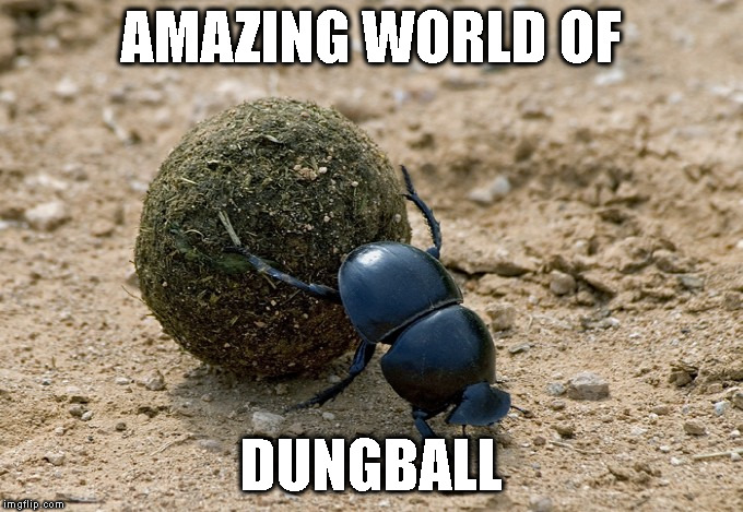 AMAZING WORLD OF DUNGBALL | image tagged in dungball | made w/ Imgflip meme maker