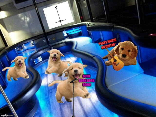 Band of Golden Retrievers on a party bus |  *PLAYS MUSIC ON GUITAR*; BORK BORK BORK BORK! | image tagged in party bus,dancing dogs,goldie the golden retriever,golden retriever,dogs | made w/ Imgflip meme maker