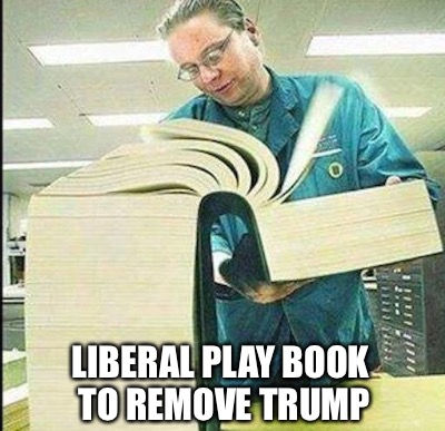 Third Friday submission | LIBERAL PLAY BOOK TO REMOVE TRUMP | image tagged in memes,book of idiots | made w/ Imgflip meme maker