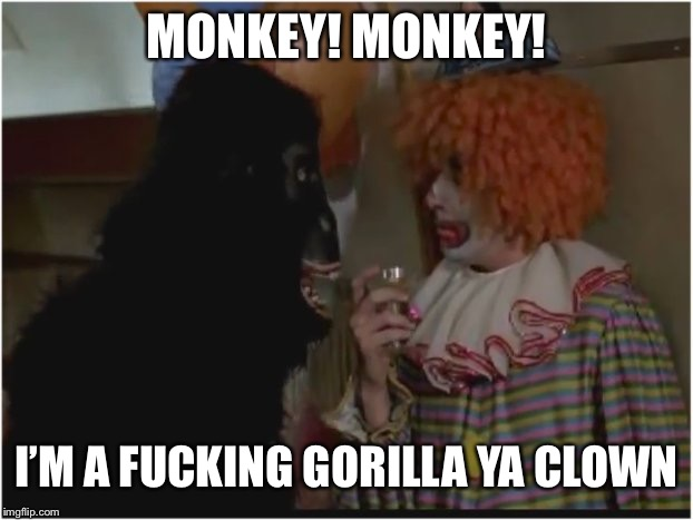 Monkey! I'm a gorilla ya clown! | MONKEY! MONKEY! I'M A F**KING GORILLA YA CLOWN | image tagged in monkey i'm a gorilla ya clown | made w/ Imgflip meme maker
