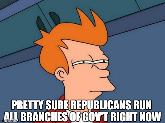 Futurama Fry Meme | PRETTY SURE REPUBLICANS RUN ALL BRANCHES OF GOV'T RIGHT NOW | image tagged in memes,futurama fry | made w/ Imgflip meme maker