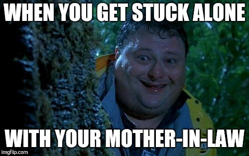WHEN YOU GET STUCK ALONE WITH YOUR MOTHER-IN-LAW | image tagged in deeply scared dennis | made w/ Imgflip meme maker