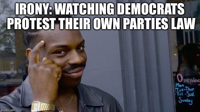Roll Safe Think About It Meme | IRONY: WATCHING DEMOCRATS PROTEST THEIR OWN PARTIES LAW | image tagged in memes,roll safe think about it | made w/ Imgflip meme maker