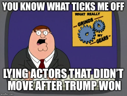 They should be enjoying our reality from afar | YOU KNOW WHAT TICKS ME OFF LYING ACTORS THAT DIDN'T MOVE AFTER TRUMP WON | image tagged in gears to the grind time,goan now,canada wants you not,memes galore,meme too | made w/ Imgflip meme maker
