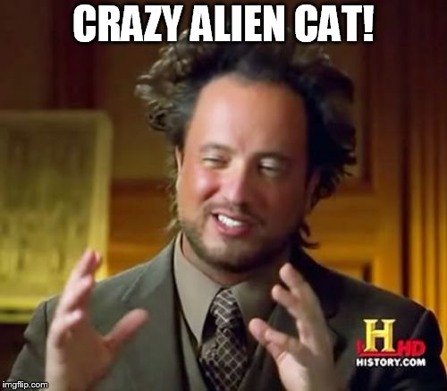 Ancient Aliens Meme | CRAZY ALIEN CAT! | image tagged in memes,ancient aliens | made w/ Imgflip meme maker