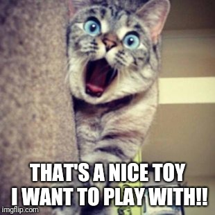 THAT'S A NICE TOY I WANT TO PLAY WITH!! | made w/ Imgflip meme maker