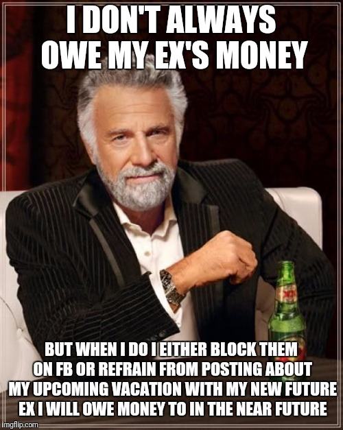 The Most Interesting Man In The World Meme | I DON'T ALWAYS OWE MY EX'S MONEY BUT WHEN I DO I EITHER BLOCK THEM ON FB OR REFRAIN FROM POSTING ABOUT MY UPCOMING VACATION WITH MY NEW FUTU | image tagged in memes,the most interesting man in the world | made w/ Imgflip meme maker