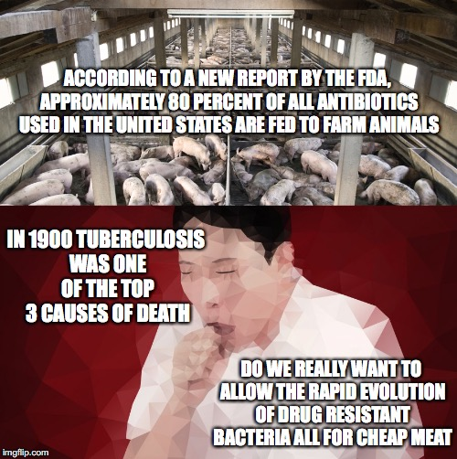 The Cheap Meat~~~Connection | ACCORDING TO A NEW REPORT BY THE FDA, APPROXIMATELY 80 PERCENT OF ALL ANTIBIOTICS USED IN THE UNITED STATES ARE FED TO FARM ANIMALS DO WE RE | image tagged in tuberculosis,death,antibiotics,cafo,drug resistant,bateria | made w/ Imgflip meme maker