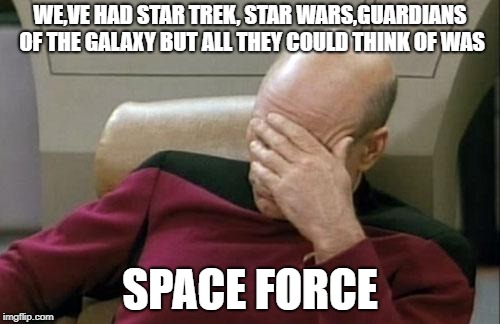 Captain Picard Facepalm | WE,VE HAD STAR TREK, STAR WARS,GUARDIANS OF THE GALAXY BUT ALL THEY COULD THINK OF WAS SPACE FORCE | image tagged in memes,captain picard facepalm | made w/ Imgflip meme maker